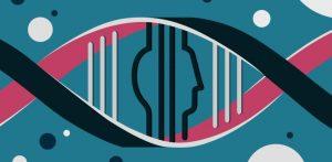 DNA segments