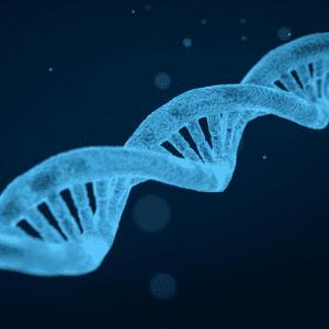 gene mutation autism