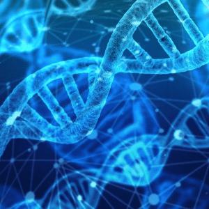genes linked to autism