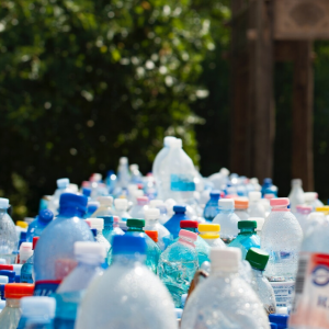 plastic chemicals linked to autism