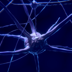 neural supression in autistic people
